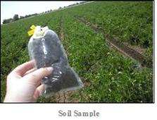 soil-sample3
